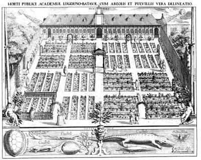 Hortus botanicus Leiden Woudanus 1610