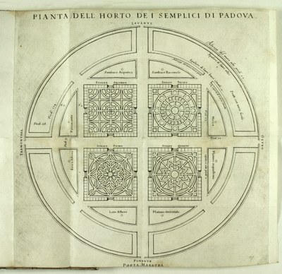 Übersichtsplan des botanischen Gartens zu Padua 1591