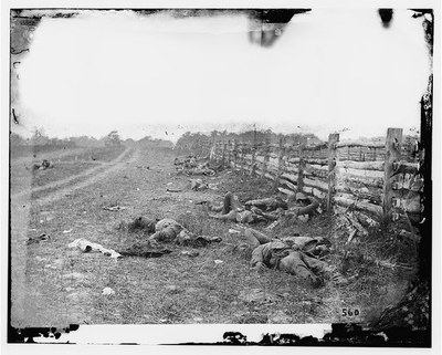 Antietam, Md. Confederate dead by a fence on the Hagerstown road IMG