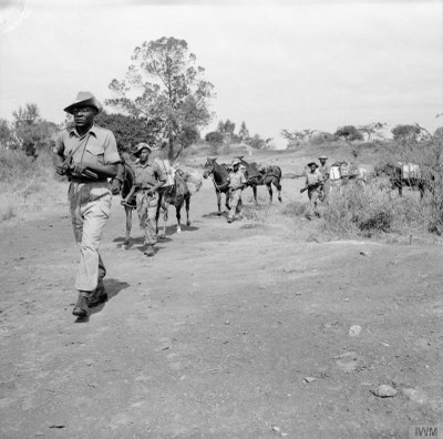 Ministry of Defence, Troops of the King's African Rifles carry supplies on horseback. They are escorted by armed soldiers on watch for Mau Mau terrorists, ca. 1952-1956. Source: Imperial War Museum, War Office Collection, Catalogue number MAU 345, http://www.iwm.org.uk/collections/item/object/205191303, IWM Non Commercial Licence © IWM (MAU 345).